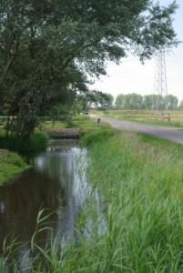 middelweg